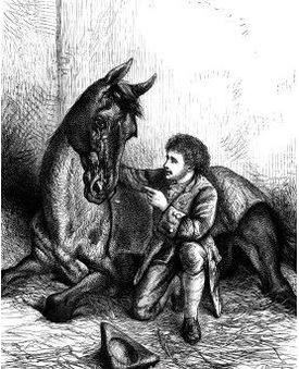 CHAPTER 12 image 59 Horse Whisperer